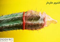 Prickly-condom-pic